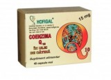 Coenzima Q10 in Ulei de Catina 15mg Hofigal