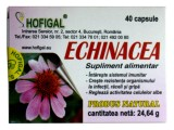 Echinacea extract concentrat 40cps(0.5gr) Hofigal