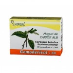 Muguri Carpen Alb (30mon x 1.5ml) Hofigal