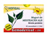 Muguri de Mesteacan Alb (30mon x 1.5ml) Hofigal