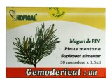 Muguri de Pin (30mon x 1.5ml) Hofigal