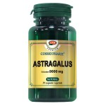 Premium Astragalus Extract 450mg 30cps Cosmo Pharm